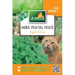 Seminte de iarba pentru pisica, nepeta cataria, 0,5 grame
