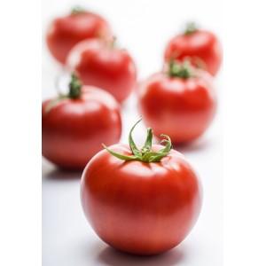 Seminte de tomate determinate Joker F1, 1000 seminte