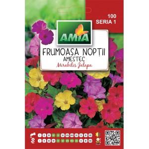 Seminte de flori frumoasa noptii, amestec culori, 3 grame