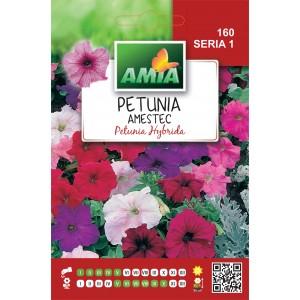 Seminte de flori petunia hibrid amestec culori, 0,5 grame