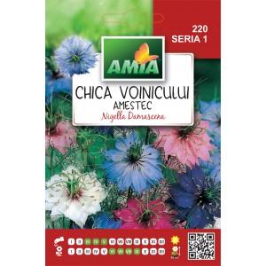 Seminte de flori chica voinicului amestec culori, 4 grame