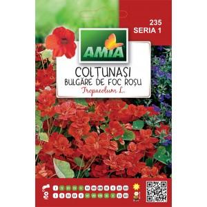 Seminte de flori coltunasi boule de feu rosu, 1,5 grame
