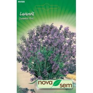 Seminte de levantica, 0,2 grame