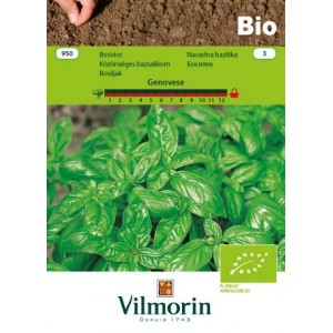 Seminte bio de busuioc genovez, 2 grame, vilmorin