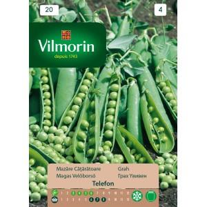 Seminte de mazare cataratoare, 40 grame, vilmorin